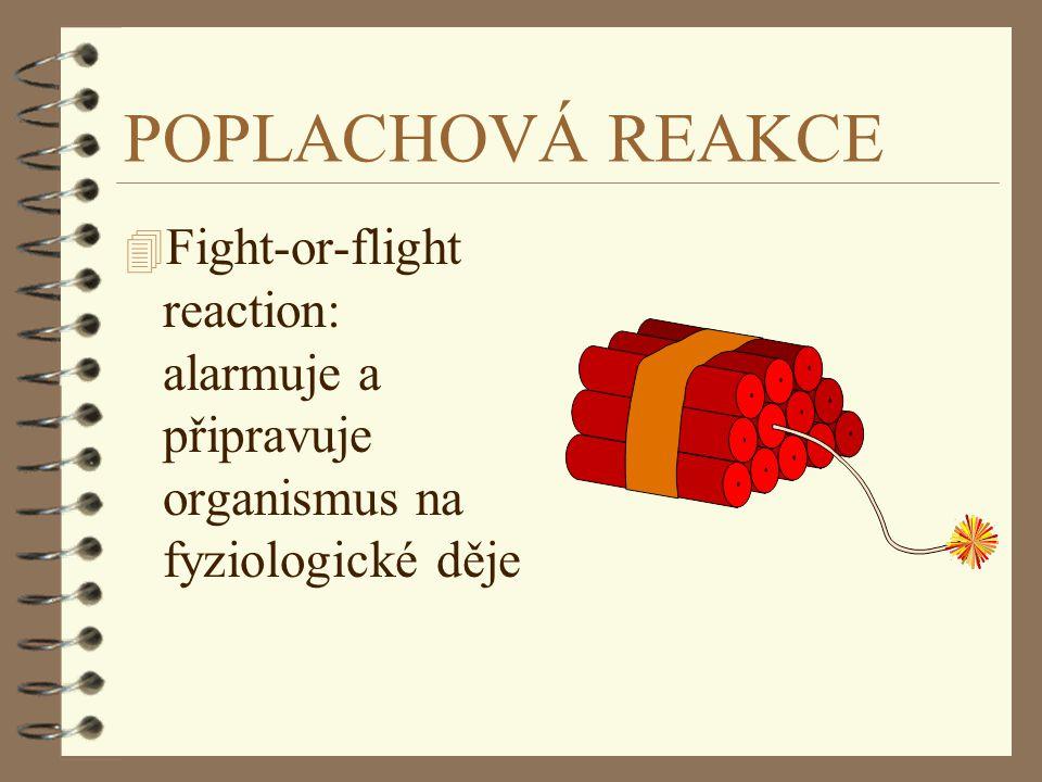 POPLACHOVÁ REAKCE Fight-or-flight reaction: alarmuje a připravuje organismus na fyziologické děje