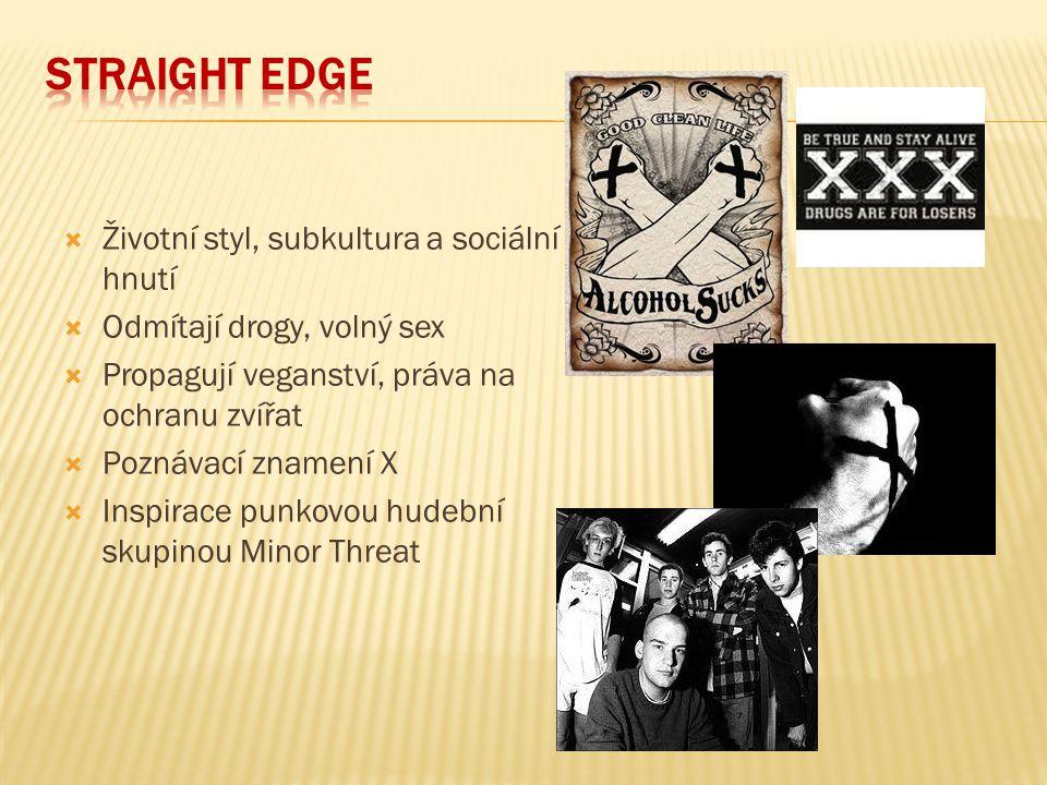 Straight edge Životní styl, subkultura a sociální hnutí