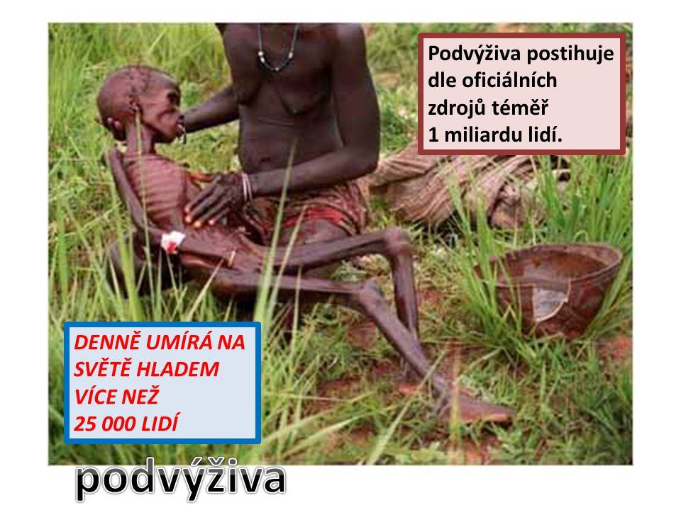 Podvýživa postihuje dle oficiálních zdrojů téměř 1 miliardu lidí.