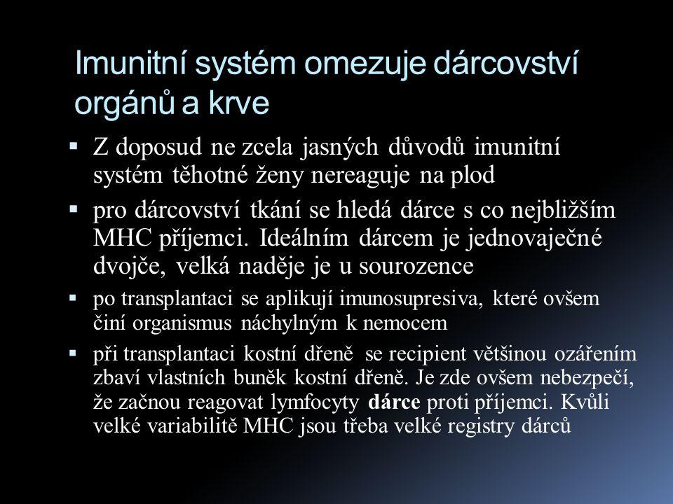 Imunitní systém omezuje dárcovství orgánů a krve