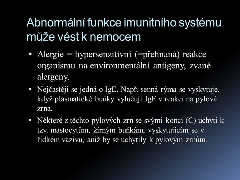 Abnormální funkce imunitního systému může vést k nemocem