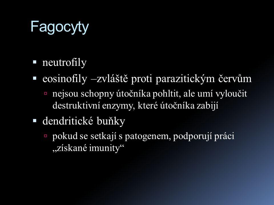 Fagocyty neutrofily eosinofily –zvláště proti parazitickým červům