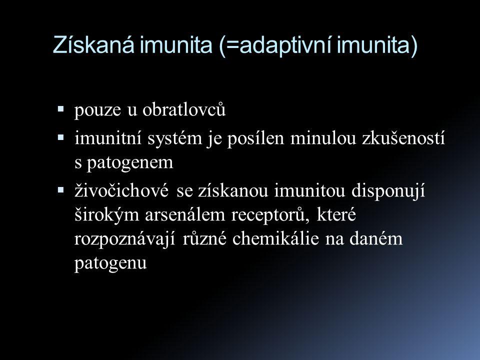 Získaná imunita (=adaptivní imunita)
