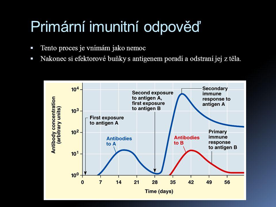 Primární imunitní odpověď