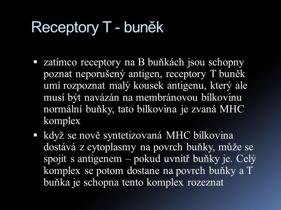 Receptory T - buněk