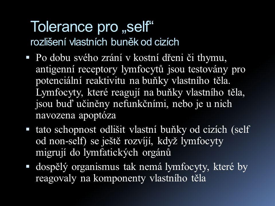 """Tolerance pro """"self rozlišení vlastních buněk od cizích"""