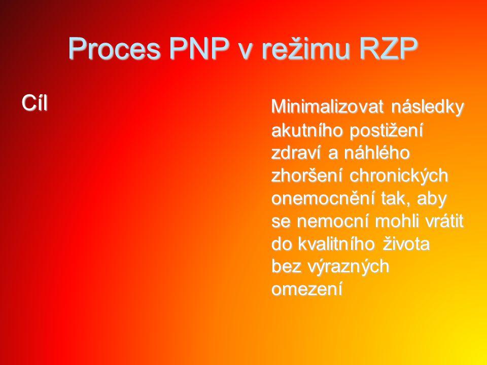 Proces PNP v režimu RZP Cíl