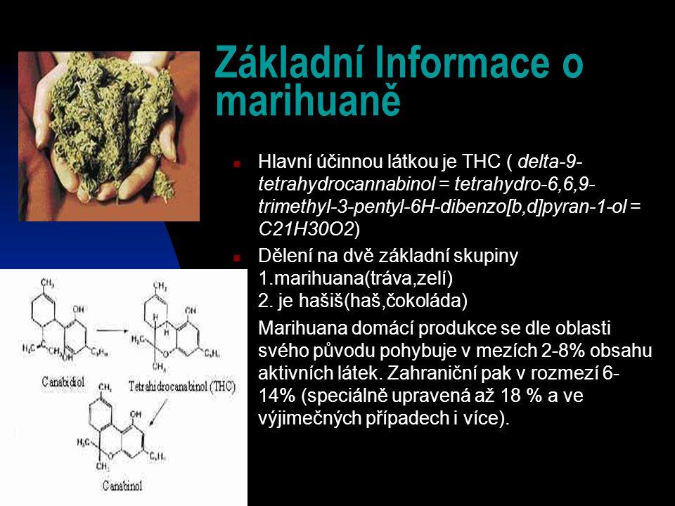 Základní Informace o marihuaně