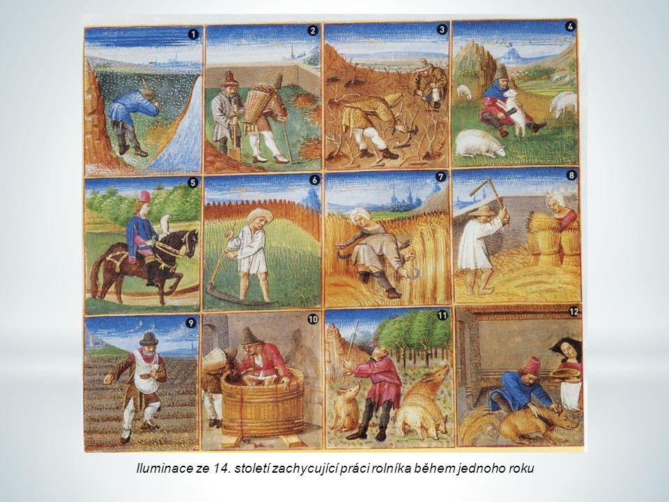 Iluminace ze 14. století zachycující práci rolníka během jednoho roku