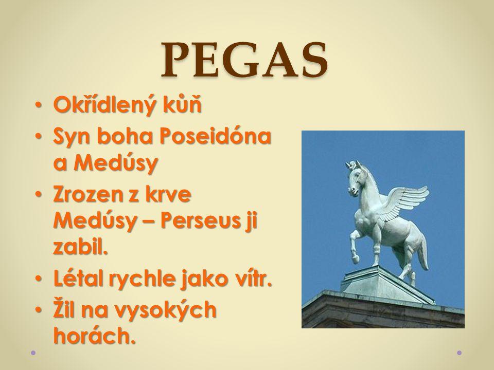PEGAS Okřídlený kůň Syn boha Poseidóna a Medúsy