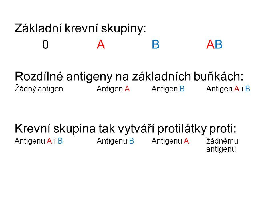 Základní krevní skupiny: 0 A B AB