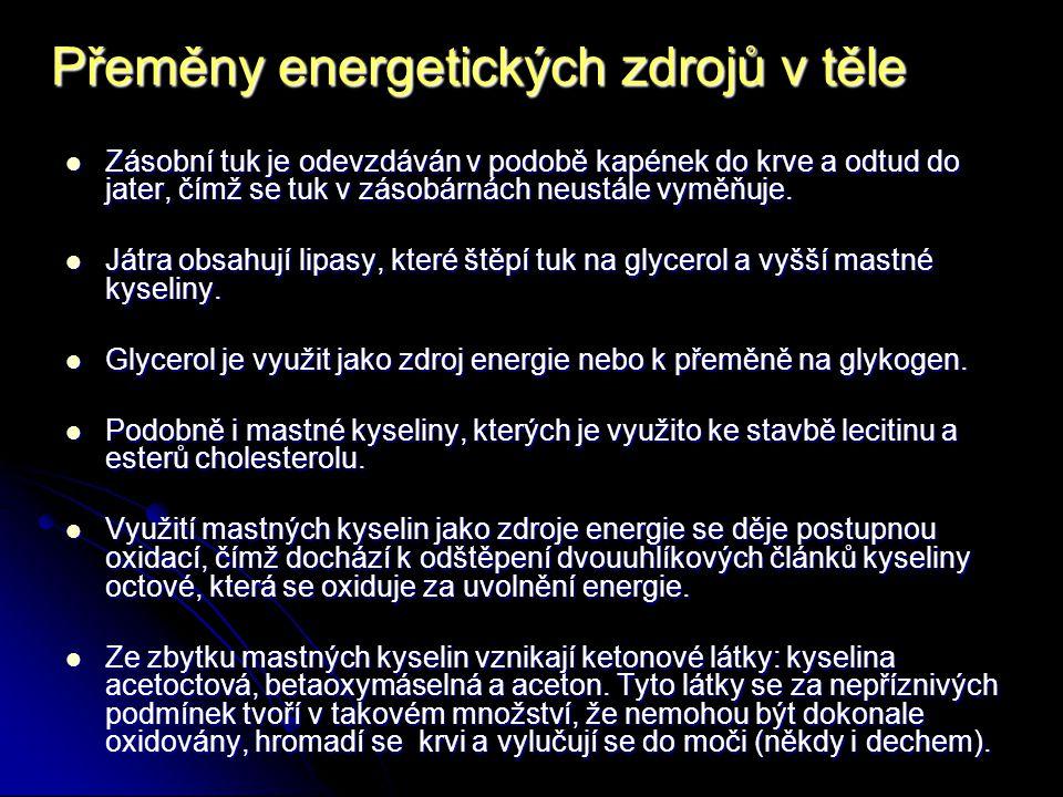 Přeměny energetických zdrojů v těle