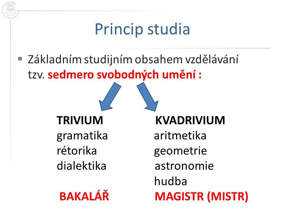 Princip studia