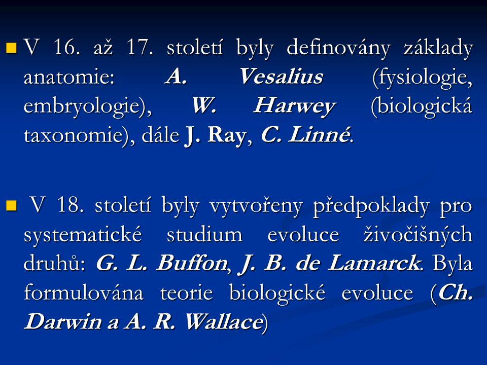V 16. až 17. století byly definovány základy anatomie: A