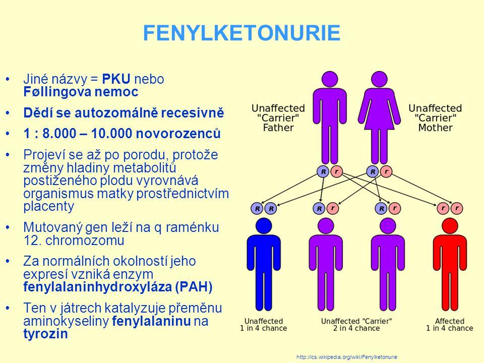 FENYLKETONURIE Jiné názvy = PKU nebo Føllingova nemoc