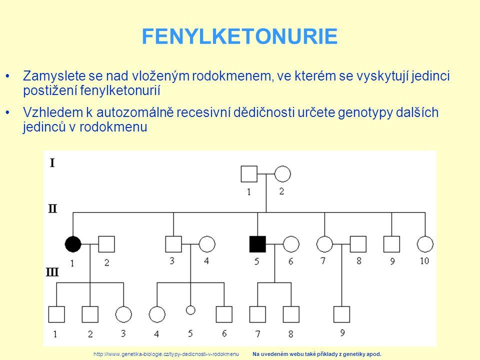 FENYLKETONURIE Zamyslete se nad vloženým rodokmenem, ve kterém se vyskytují jedinci postižení fenylketonurií.