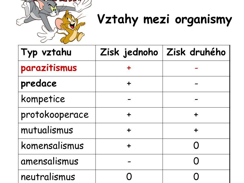 Vztahy mezi organismy Typ vztahu Zisk jednoho Zisk druhého