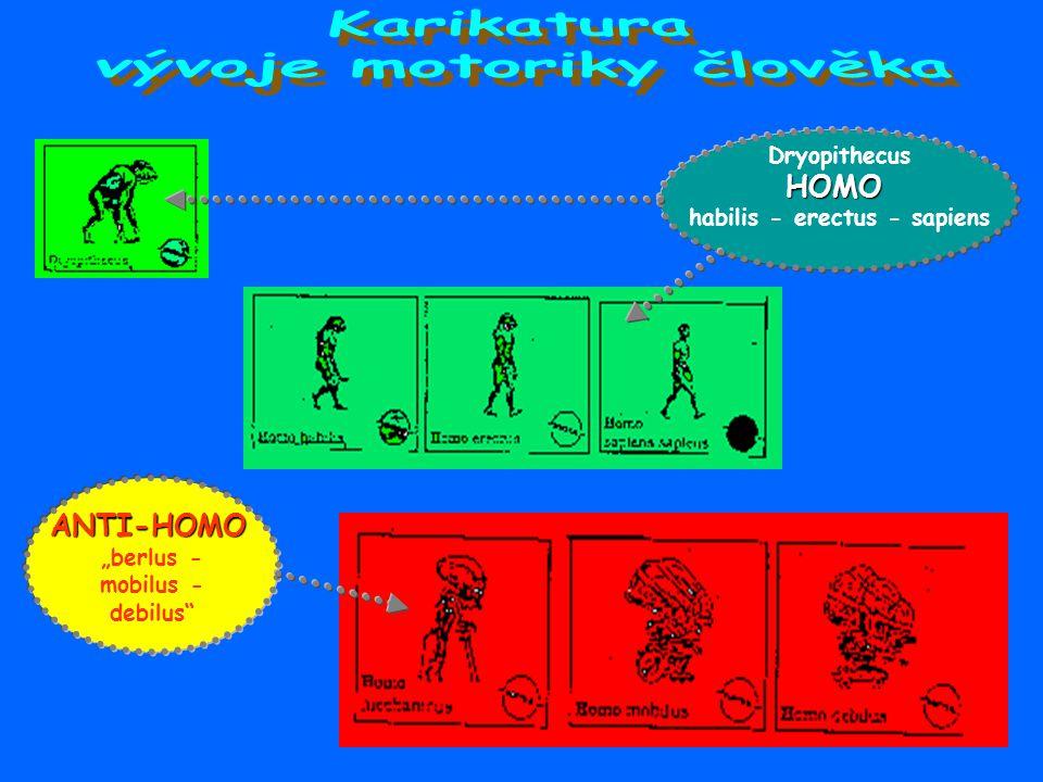 vývoje motoriky člověka habilis - erectus - sapiens