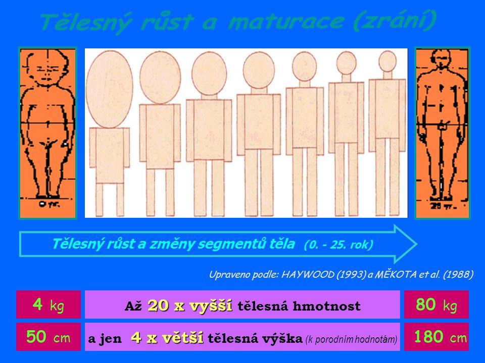4 kg 80 kg 50 cm 180 cm Tělesný růst a maturace (zrání)