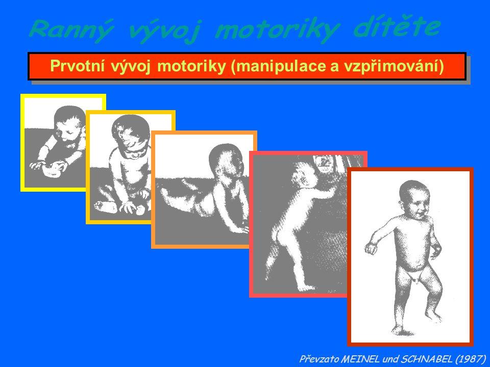 Prvotní vývoj motoriky (manipulace a vzpřimování)