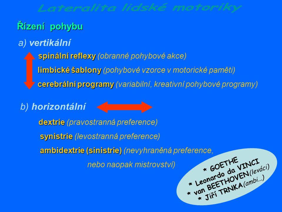 Lateralita lidské motoriky