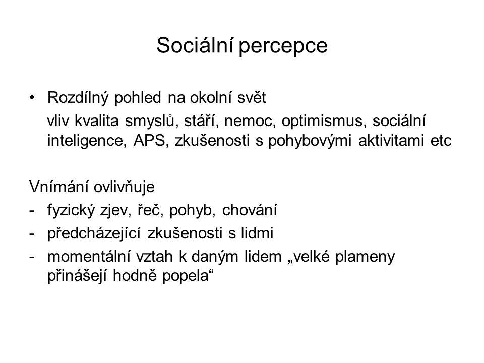 Sociální percepce Rozdílný pohled na okolní svět