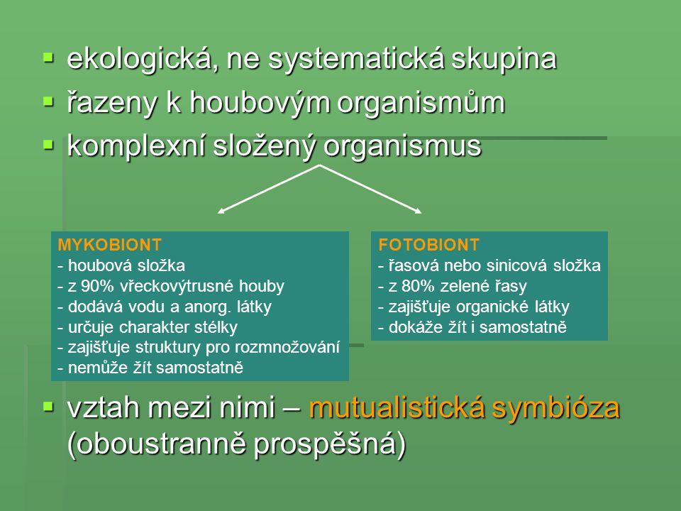 ekologická, ne systematická skupina řazeny k houbovým organismům