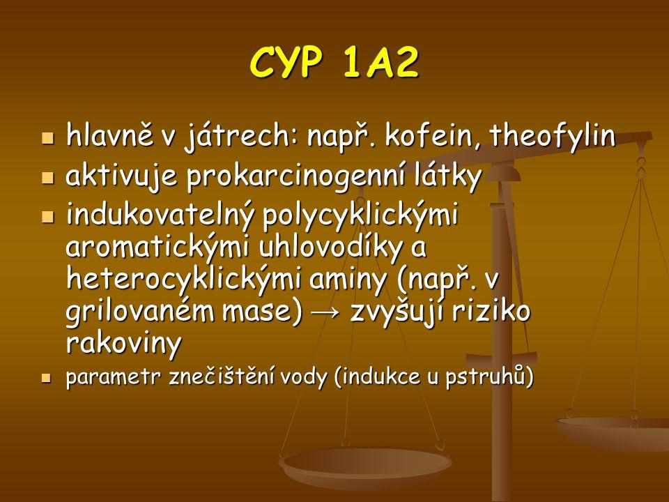 CYP 1A2 hlavně v játrech: např. kofein, theofylin
