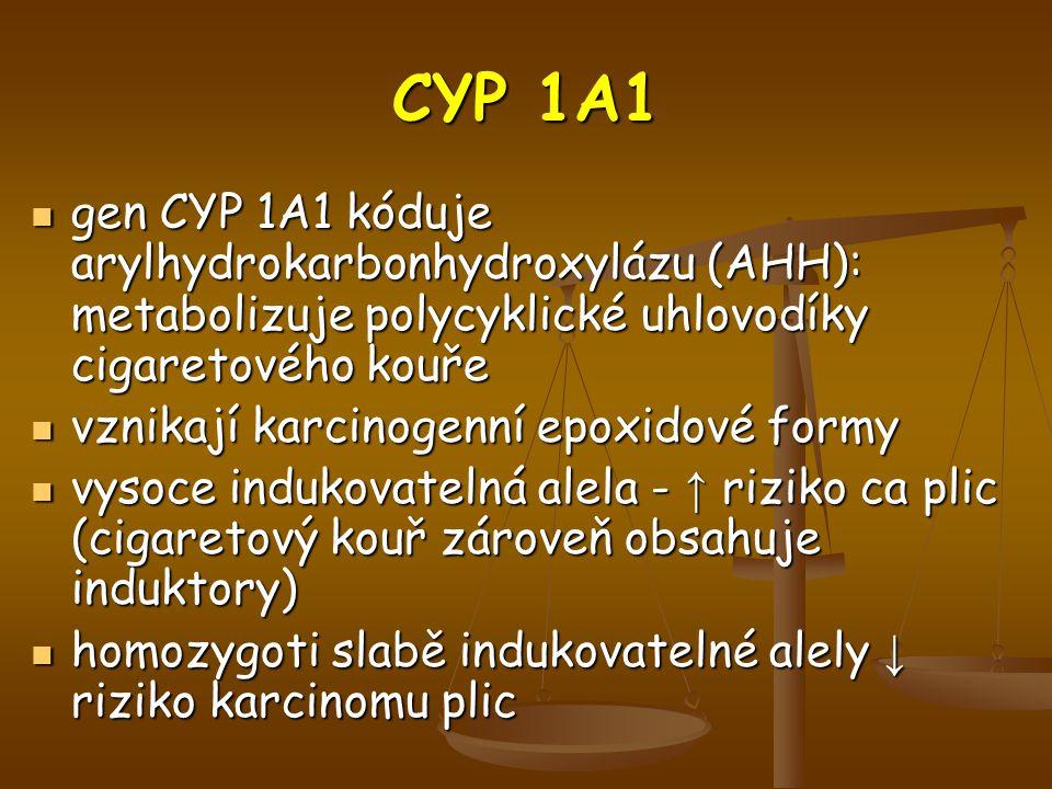 CYP 1A1 gen CYP 1A1 kóduje arylhydrokarbonhydroxylázu (AHH): metabolizuje polycyklické uhlovodíky cigaretového kouře.