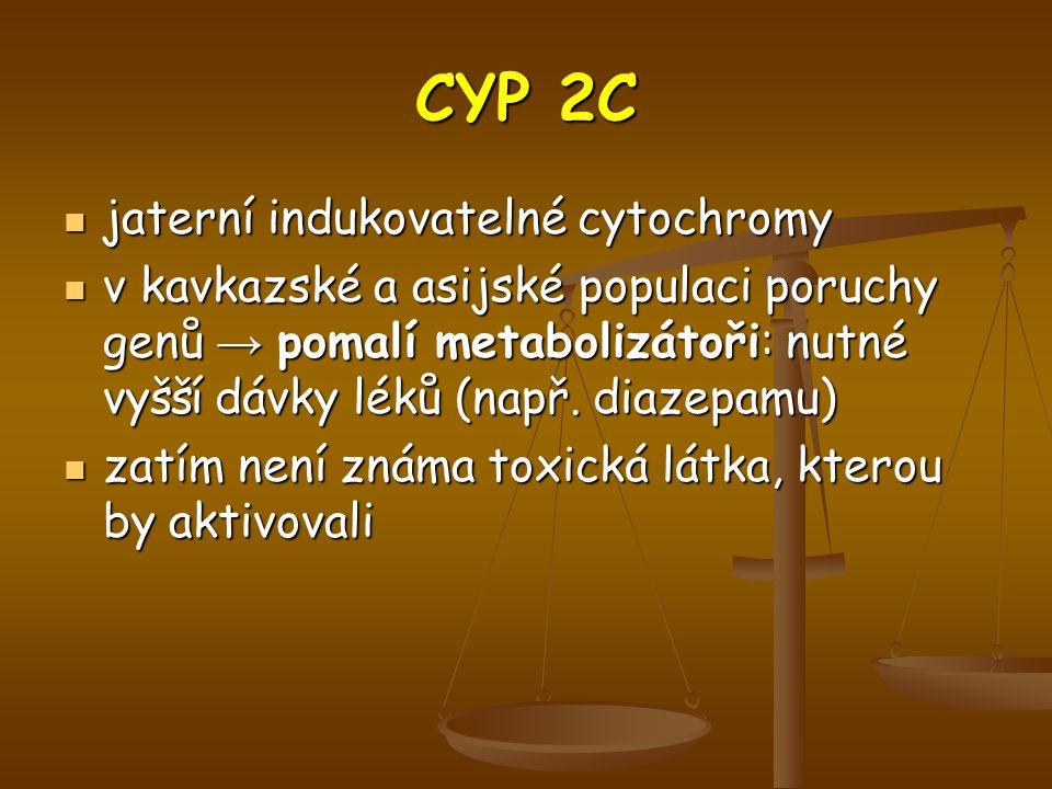 CYP 2C jaterní indukovatelné cytochromy
