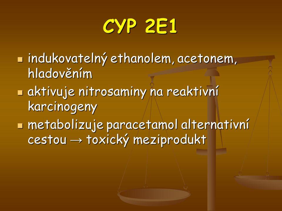 CYP 2E1 indukovatelný ethanolem, acetonem, hladověním