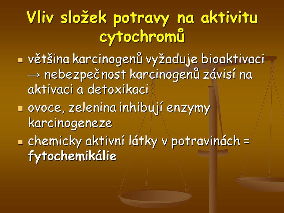 Vliv složek potravy na aktivitu cytochromů