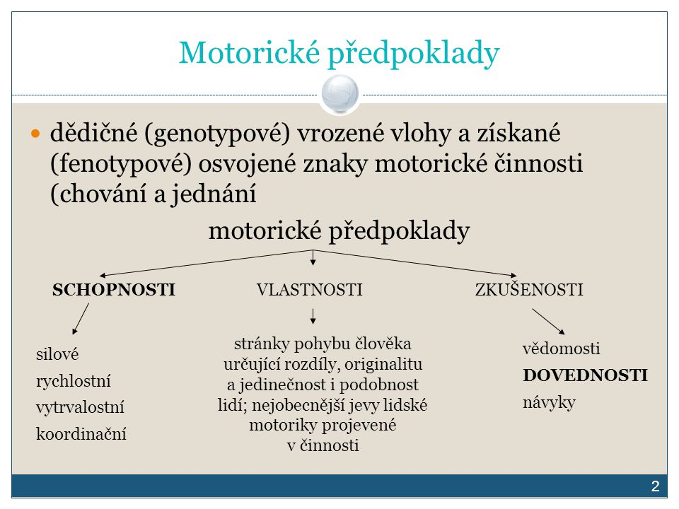 Motorické předpoklady