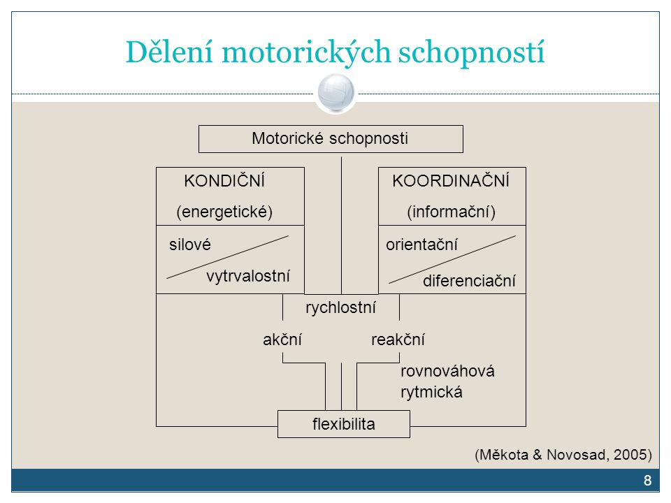 Dělení motorických schopností