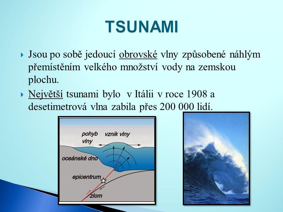 TSUNAMI Jsou po sobě jedoucí obrovské vlny způsobené náhlým přemístěním velkého množství vody na zemskou plochu.