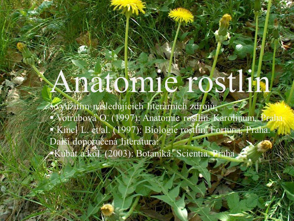Anatomie rostlin s využitím následujících literárních zdrojů: