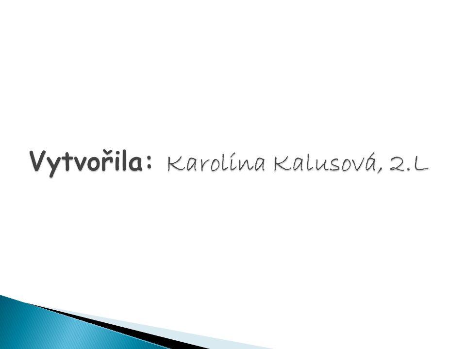 Vytvořila: Karolína Kalusová, 2.L