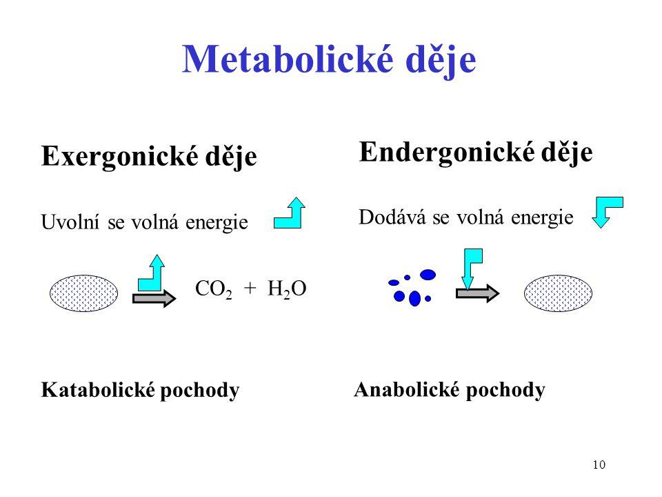 Metabolické děje Endergonické děje Exergonické děje