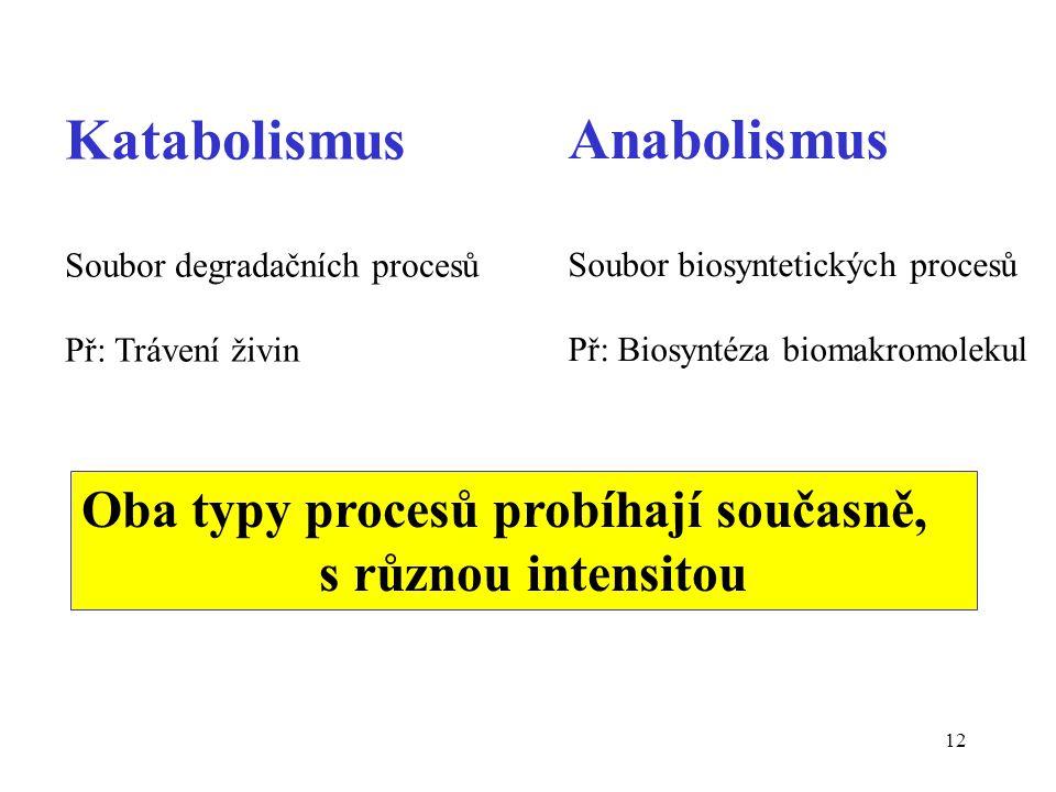 Katabolismus Anabolismus Oba typy procesů probíhají současně,