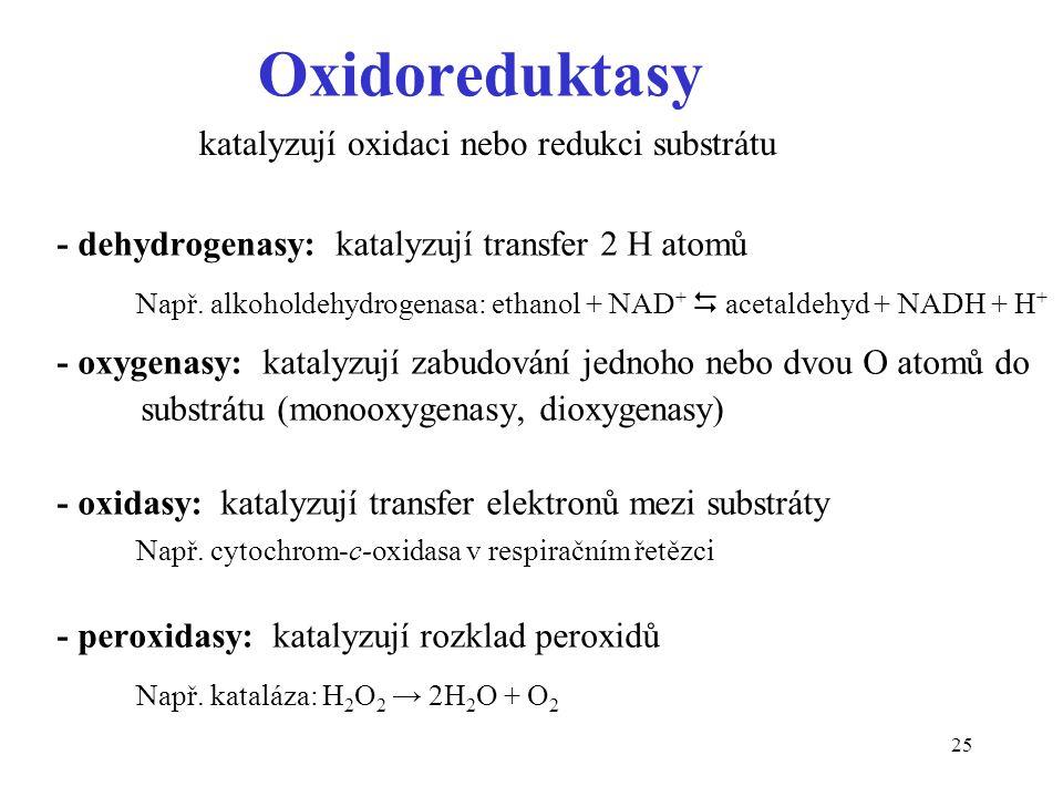 Oxidoreduktasy katalyzují oxidaci nebo redukci substrátu