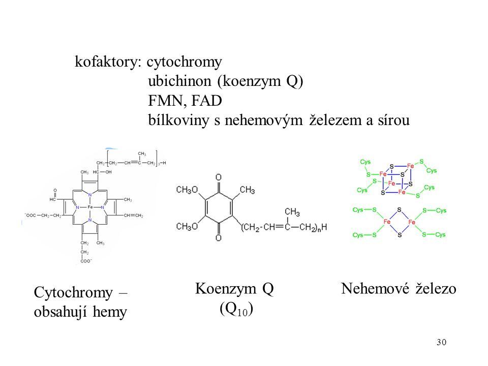 kofaktory: cytochromy