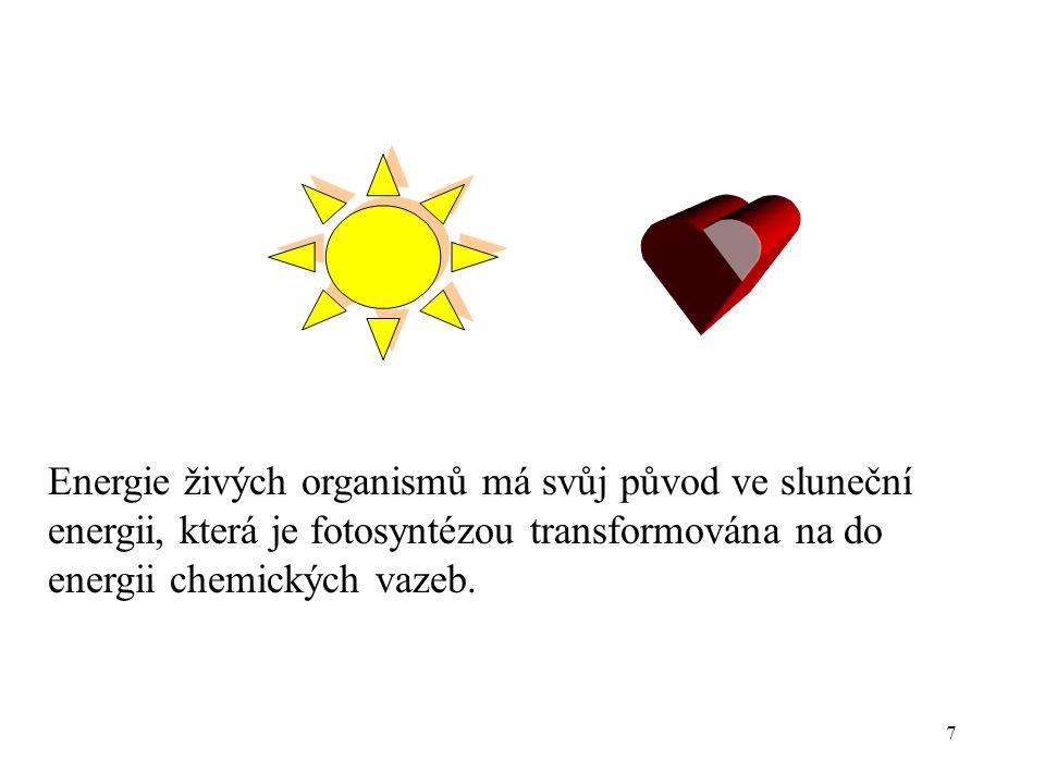 Energie živých organismů má svůj původ ve sluneční energii, která je fotosyntézou transformována na do energii chemických vazeb.