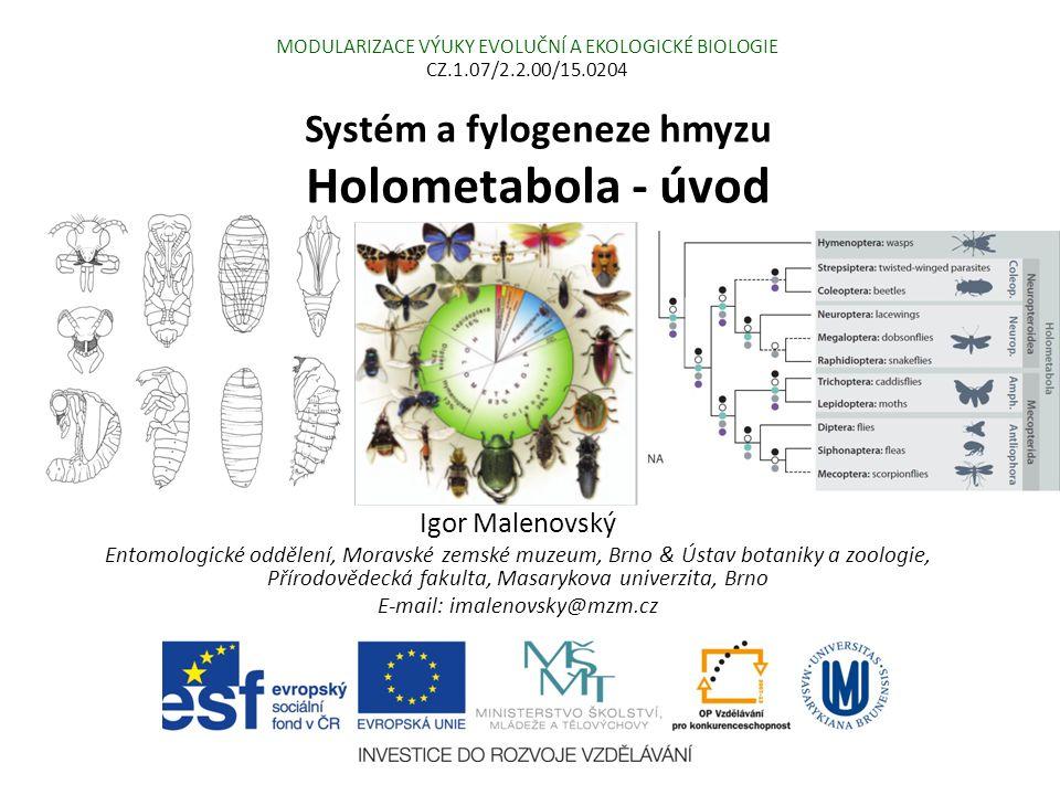 Systém a fylogeneze hmyzu Holometabola - úvod