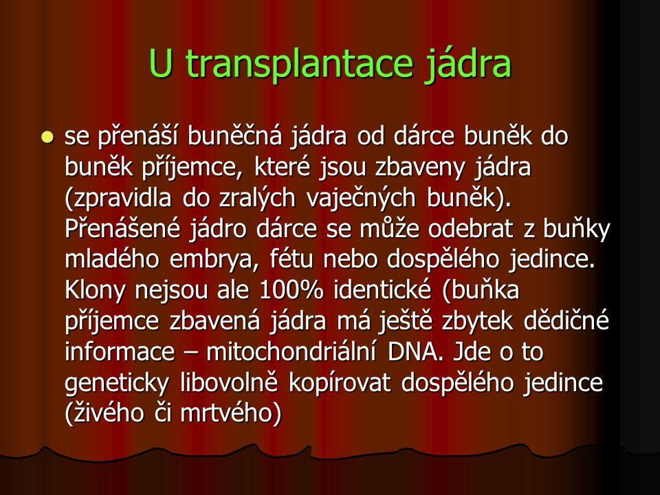 U transplantace jádra