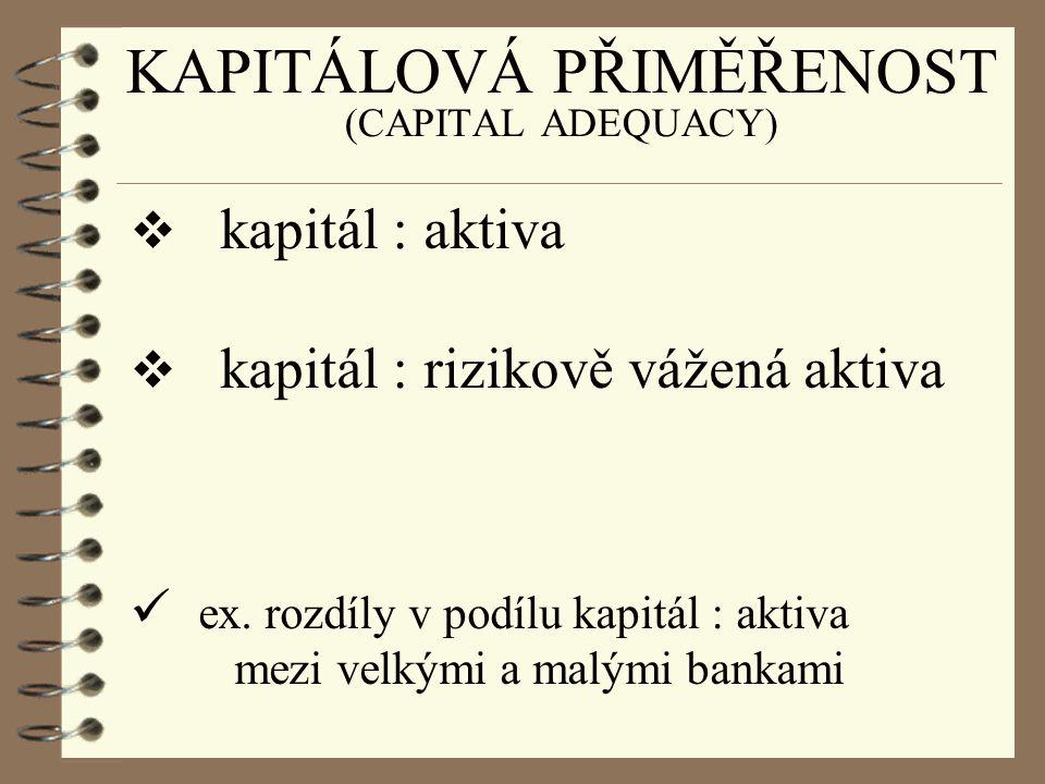KAPITÁLOVÁ PŘIMĚŘENOST (CAPITAL ADEQUACY)