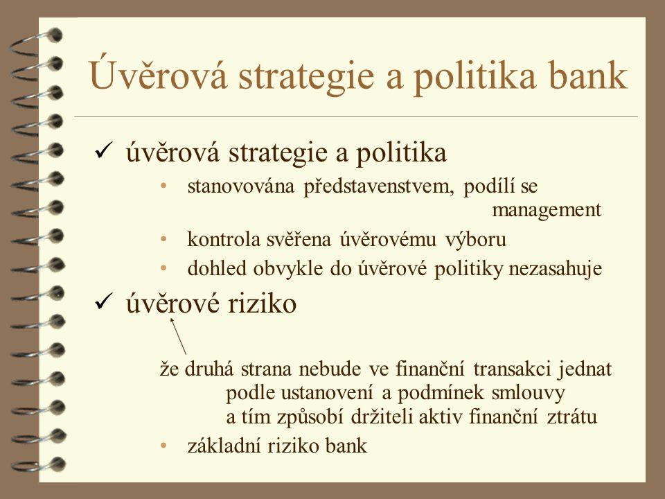 Úvěrová strategie a politika bank