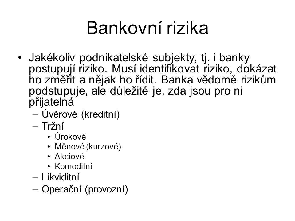 Bankovní rizika