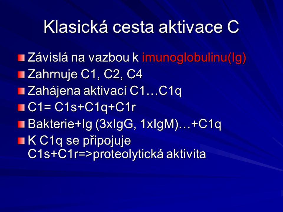 Klasická cesta aktivace C