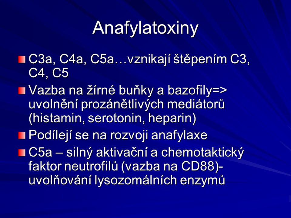 Anafylatoxiny C3a, C4a, C5a…vznikají štěpením C3, C4, C5