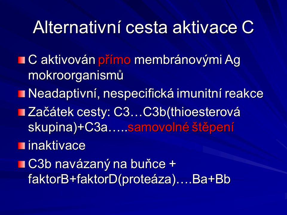 Alternativní cesta aktivace C